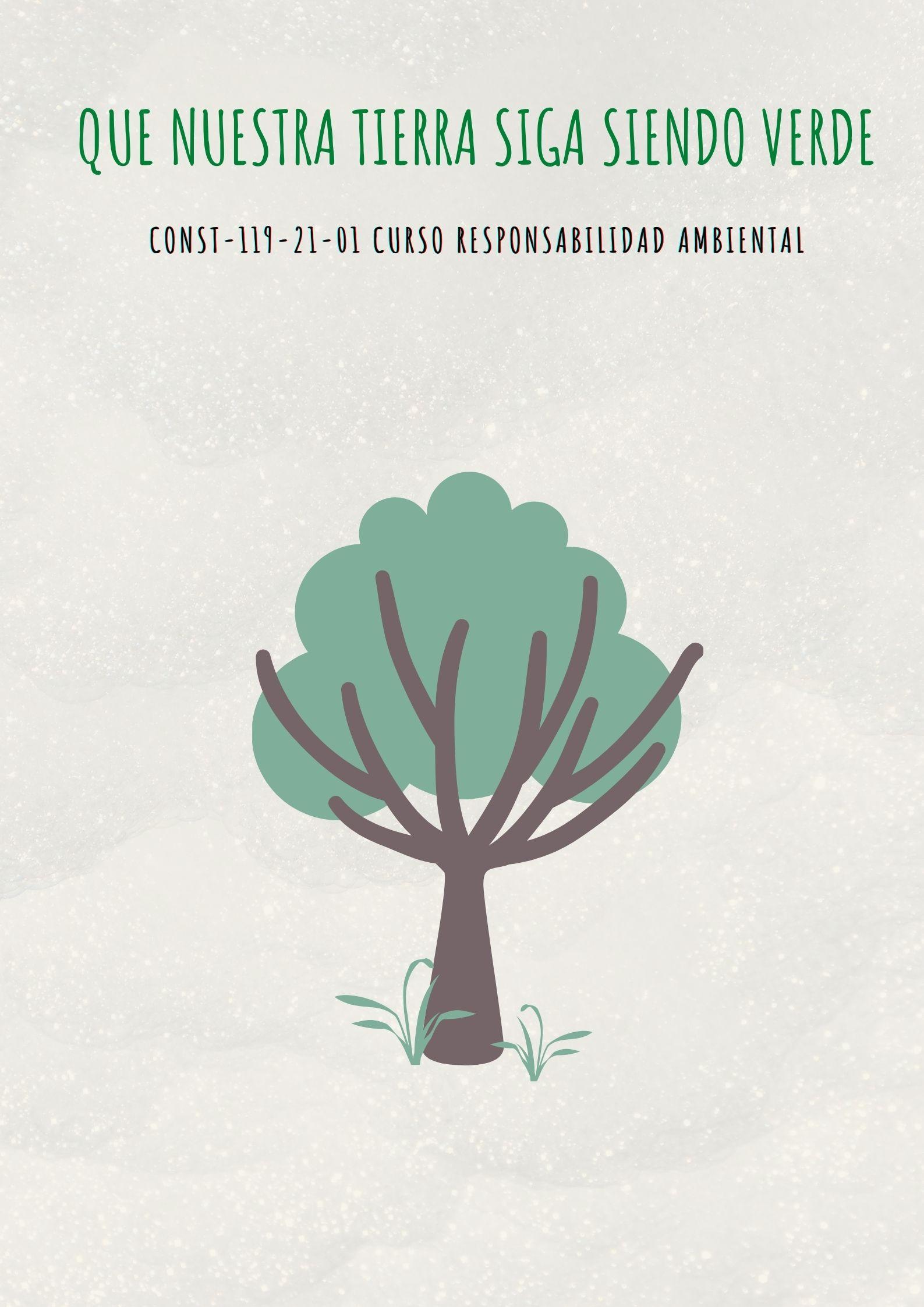 CONST-119-21-01 Curso Responsabilidad Ambiental