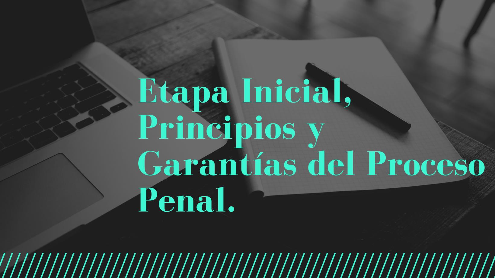 EDP-302-21-01  Etapa Inicial, Principios y Garantías del Proceso Penal