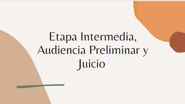 ENJ-1-303-21-01 Etapa Intermedia, Audiencia Preliminar y Juicio
